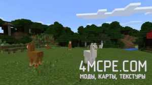 Minecraft Pocket Edition 1.1 На Телефон